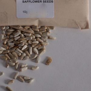 Dyer's safflower seeds.-0
