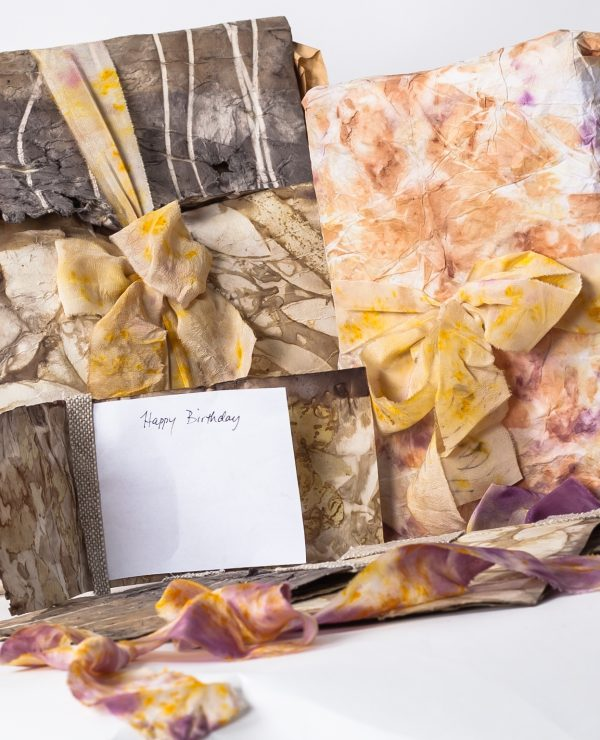 Wellington New Zealand - Natural dyeing to create wrappings cards and ribbons with Barbara Wheeler at the Wellington Botanical Gardens-1121
